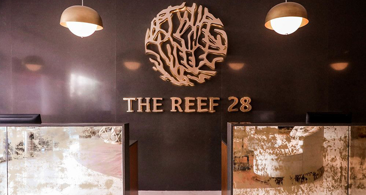 The Reef 28 Adults Only All Suites